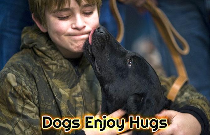 4-dogs-enjoy-hugs